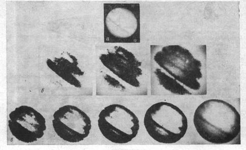 Image 4. Marks of equidensite on Jupiter image: a – initial imprint of astro negative; б – photos of Lippmann's image received using interference light filter at different angles of its incline at reflected light; в – the same but at passing light.